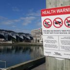 Wellington's Summer of Discontent: 120 Days of Council Stasis